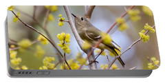 Ruby-crowned Kinglet Portable Battery Charger by Kerri Farley
