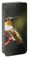Ruby Throated Hummingbird 2 Portable Battery Charger