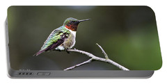 Ruby Throated Hummingbird Spotlight Portable Battery Charger by Christina Rollo