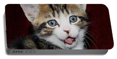 Portable Battery Charger featuring the photograph Rude Kitten by Terri Waters