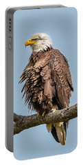 Ruffled Feathers Bald Eagle Portable Battery Charger