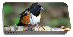 Rufous Sided Towhee Portable Battery Charger by Deena Stoddard