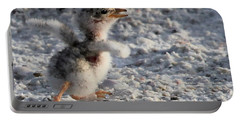 Running Free - Least Tern Portable Battery Charger by Meg Rousher
