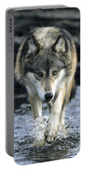 Portable Battery Charger featuring the photograph Running Wolf by Chris Scroggins