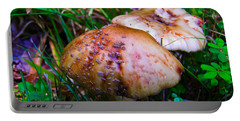 Rusty Mushroom Portable Battery Charger