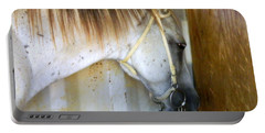 Portable Battery Charger featuring the photograph Saddle Break by Kathy Barney