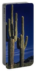 Saguaro Cactus Sunset Arizona State Usa Portable Battery Charger