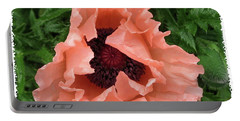 Salmon Colored Poppy Portable Battery Charger by Barbara Griffin