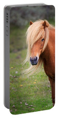 Salon Perfect Pony Portable Battery Charger