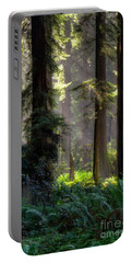 Sanctuary 2 Portable Battery Charger by Mark Alder