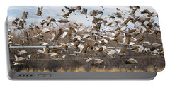 Sandhill Crane Explosion Portable Battery Charger