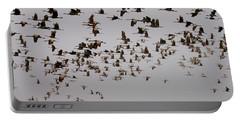 Sandhill Crane Migration Portable Battery Charger
