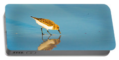 Sandpiper Mirror Portable Battery Charger