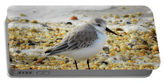 Sandpiper Portable Battery Charger