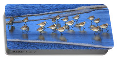 Sandpiper Symmetry Portable Battery Charger