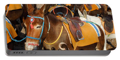 Santorini Donkeys Ready For Work Portable Battery Charger