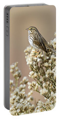 Portable Battery Charger featuring the photograph Savannah Sparrow by Bryan Keil