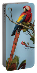 Scarlet Macaw Ara Macao, Tarcoles Portable Battery Charger
