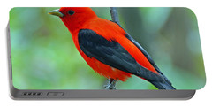 Scarlet Tanager Portable Battery Charger by Rodney Campbell