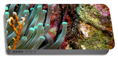 Portable Battery Charger featuring the photograph Sea Anemone And Coral Rainbow Wall by Amy McDaniel