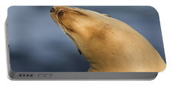 Portable Battery Charger featuring the photograph Sea Lion Stretch by Bryan Keil