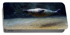 Portable Battery Charger featuring the photograph Sea Lion Swimming Upsidedown by Verana Stark