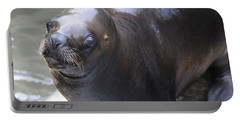 Sea Lion Portable Battery Charger by Venetia Featherstone-Witty
