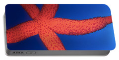 Sea Star Portable Battery Charger