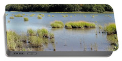 Portable Battery Charger featuring the photograph Seagrass by Ed Weidman