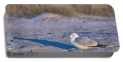 Seagull At Sunrise Portable Battery Charger