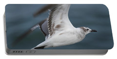 Seagull In Flight 12 Portable Battery Charger