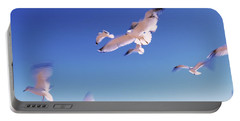 Seagulls Flying Along Route A1a Portable Battery Charger