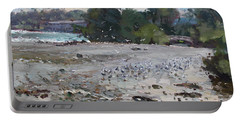 Seagulls On Niagara River Portable Battery Charger