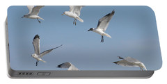 Seagulls See A Cracker Portable Battery Charger