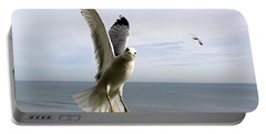 Inquisitive Seagull Portable Battery Charger by Richard Rosenshein