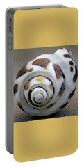 Portable Battery Charger featuring the photograph Seashells Spectacular No 2 by Ben and Raisa Gertsberg