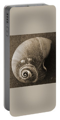 Portable Battery Charger featuring the photograph Seashells Spectacular No 31 by Ben and Raisa Gertsberg