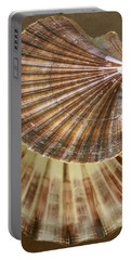 Portable Battery Charger featuring the photograph Seashells Spectacular No 54 by Ben and Raisa Gertsberg
