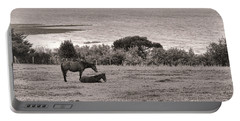 Seaside Horses Portable Battery Charger