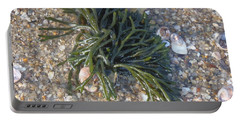 Portable Battery Charger featuring the photograph Seaweed by Robert Nickologianis