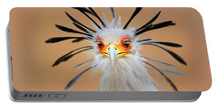 Secretary Bird Portrait Close-up Head Shot Portable Battery Charger