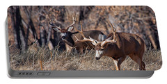 Portable Battery Charger featuring the photograph Seeing Double by Jim Garrison