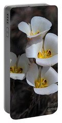 Sego Lily Portable Battery Charger