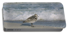 Semiplated Sandpiper Portable Battery Charger