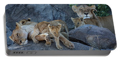 Serengeti Pride Portable Battery Charger