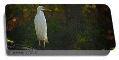 Shadow Heron Portable Battery Charger