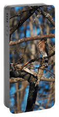 Portable Battery Charger featuring the photograph Sharp Shinned Hawk by Mim White