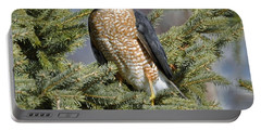 Sharp Shinned Hawk Portable Battery Charger by Rodney Campbell