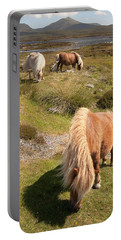 Shetland Ponies Portable Battery Charger