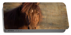 Shetland Pony At Sunset Portable Battery Charger